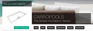 Bedrijfswebsite Carropools